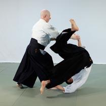 company_aikido_dojo